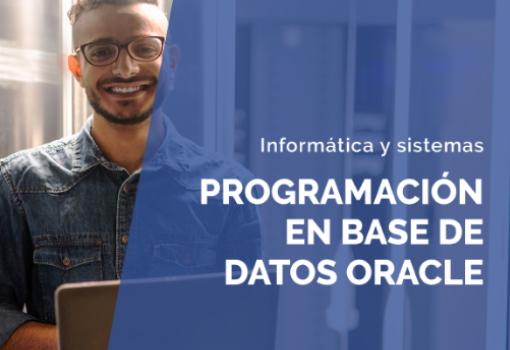 eBook - Programación en Base de datos Oracle